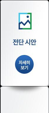 전단 시안